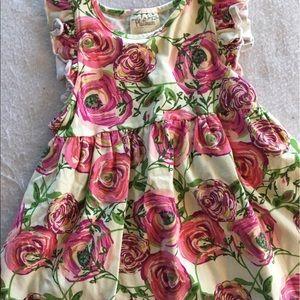 Platinum Matilda Jane floral dress